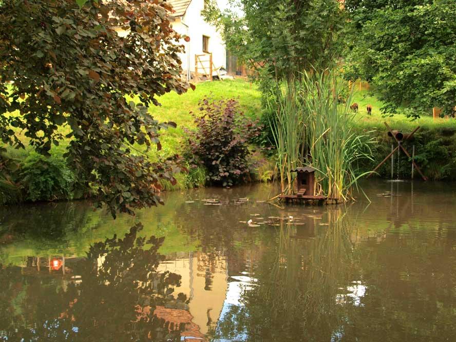 Zum Rundblick Teichanlage